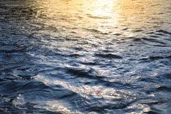surface vatten för guld- krusningar Royaltyfri Foto