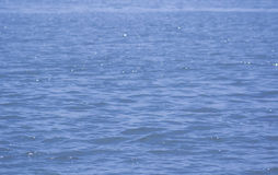 surface vatten för guld- krusningar Arkivfoto
