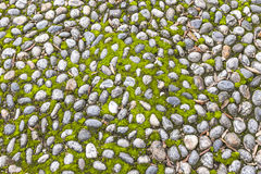 Surface of vintage pebble pavement Stock Photography