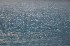 Surface of water and falling rain drops Stock Image