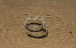 On the surface of the water formed a large and small crown from. From falling drops on the surface of the water formed a large and small crown stock images