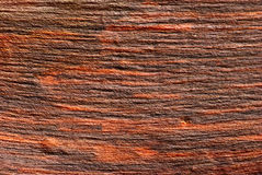 The surface of the wood. Without bark Royalty Free Stock Image