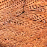 Surface wood log texture background Stock Photo