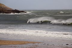 Surfant en bas du Gower, Swansea, sud du pays de Galles, R-U Photo libre de droits