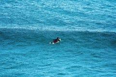 Surfar do habitat da baleia da praia de Logan imagem de stock