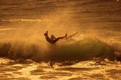Surfar do mar fotografia de stock royalty free