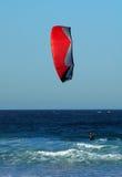 Surfar do papagaio Fotografia de Stock