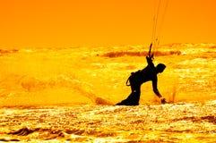 Surfar do papagaio Imagem de Stock