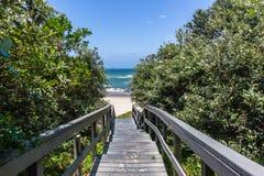 Surfar do papagaio da vegetação do oceano das escadas da passagem da praia imagens de stock royalty free
