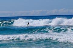 Surfar upp på den Mollymook stranden Royaltyfri Fotografi