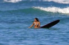 surfare för flickajessshedlock arkivfoton