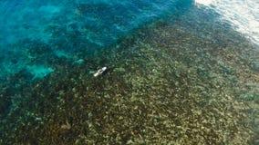 Surfare för flyg- sikt på vågorna Siargao Filippinerna oklarhet 9 stock video