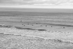 Surfare i linen up Arkivbilder