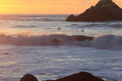 Surfare i San Francisco Lands End Royaltyfri Bild
