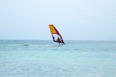 Surfare på den Aruba ön Arkivbild