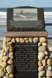 Surfare som är minnes- på att surfa för Tourmalinekanjon, parkerar San Diego California Royaltyfri Bild