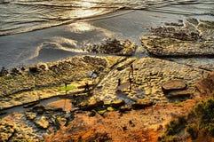 Surfare som in kommer på solnedgången royaltyfria foton