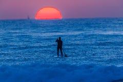 Surfare som paddlar soluppgång för brädehavhorisont arkivbilder