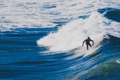 Surfare som rider stora vågor i den Bondi stranden i Sydney under Ausen Fotografering för Bildbyråer