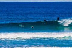 Surfare som rider stora vågor i den Bondi stranden i Sydney under Ausen Arkivbilder