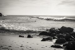 Surfare som tar avbrottsvågen på sceniska Atlantic Ocean i svartvitt, capbreton, Frankrike Royaltyfri Fotografi
