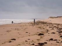 surfarear Fotografering för Bildbyråer