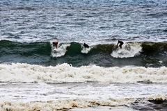 surfarear tre Arkivbild