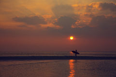 Surfareflicka som går på stranden Royaltyfri Foto