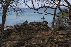 Surfaregravar Maui arkivbild