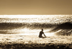 Surfarekontur royaltyfri foto