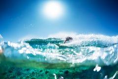 Surfaren rider havvågen arkivbild