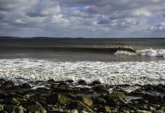 Surfaren surfar en perfekt våg på en solig dag Royaltyfri Bild