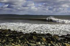 Surfaren surfar en perfekt våg på en solig dag Fotografering för Bildbyråer