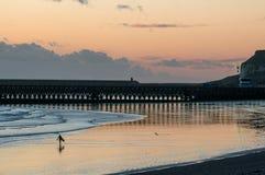 Surfboard нося серфера идя на пляж стоковое изображение rf