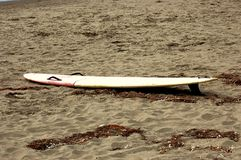 surfboard fotos de stock
