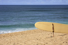 Surfboard. A Surfboard at the beach Royalty Free Stock Photo