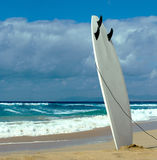 Surfboard Stock Images