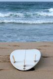 Surfboard. On a tropical beach Royalty Free Stock Photography