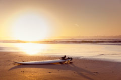 surfboard imagens de stock royalty free