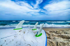 Free Surfboard And Fins Awaiting To Get Into Ocean Water Royalty Free Stock Photo - 43820495