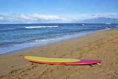 Surfboard and Beach Scenic Royalty Free Stock Photos