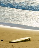 Surfboard on the beach. Surfing Royalty Free Stock Photos