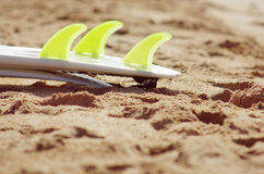 Surfboard fins. Detail of surfboard green fins resting on the wet sand of a beach Stock Images