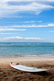Surfboard in Hawaii Stock Image