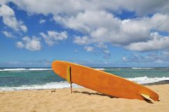 Surfboard on Hawaii Beach Stock Photos