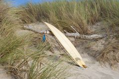 Surfboard leaning against wood. Surfboard on beach leaning against dry wood on dune Stock Photos