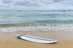 Surfboard lying on sand near the ocean Royalty Free Stock Photography
