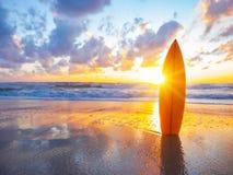Surfboard na plaży przy zmierzchem fotografia stock