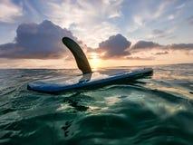 Morning sunrise surf royalty free stock image