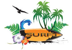 Surfboard Royalty Free Stock Image